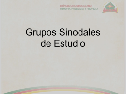 """Grupo Sinodal de Estudio""."