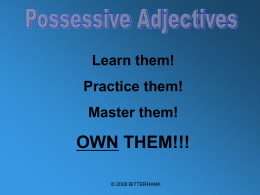 Possessive Adjective Power Point