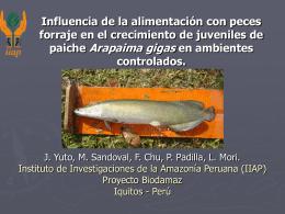 Efecto de cinco tasas de alimentación con peces forraje en el