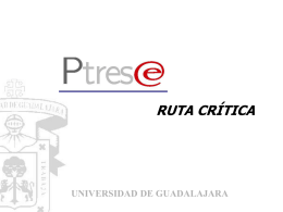 Ruta crítica P3E - Consejo de Rectores