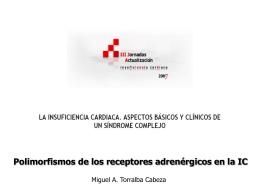 Polimorfismos de los receptores adrenérgicos en la IC Dr. Miguel