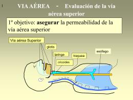 VIA AÉREA - Evaluación de la vía aérea superior