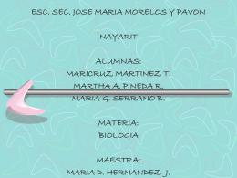 MARIA D. HERNANDEZ J. EL SENTIDO DEL OLFATO. Objetivo