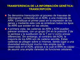 transferencia de la información genética: transcripción