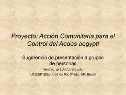 Presentation en Power Point - Ibilce