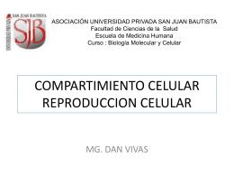 células madre pluripotentes - Universidad Privada San Juan Bautista