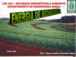 ler 244 energia biomassa palhiço aula