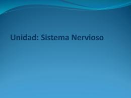 Descargar 3_Medio_La_Neurona_17-04-2015