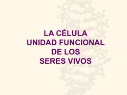 Funciones celulares