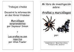 Arañas y murciélagos