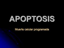 xxiii. muerte celular programada (apoptosis)