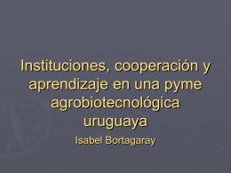 Instituciones, cooperación y aprendizaje en una pyme