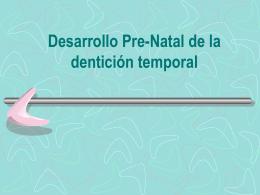 Capítulo 1 desarrollo prenatal de la DT