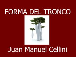 Biometria Forestal - Practico 04 -Forma del - Aula Virtual