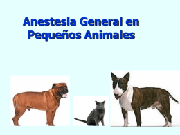 Anestesiología General