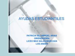 AYUDAS ESTUDIANTILES - Liceo Max Salas Marchán de Los Andes