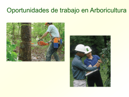 Power Point sobre las Oportunidades de Trabajo en Arboricultura