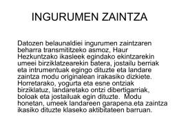 INGURUMEN ZAINTZA