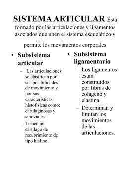 TIPOS DE ARTICULACIONES - E
