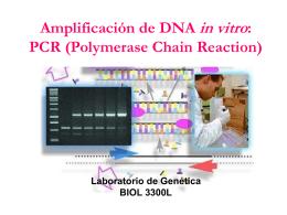 """Replicación de DNA en sintetizador automático: """"PCR"""" (Reacción"""