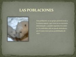 PowerPoint 3