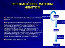 REPLICACIÓN DEL MATERIAL GENÉTICO