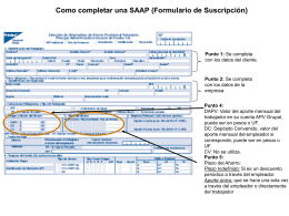 APV_instructivo_formulario