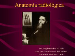Anatomía radiológica