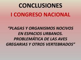 conclusiones - Ayuntamiento de Huesca
