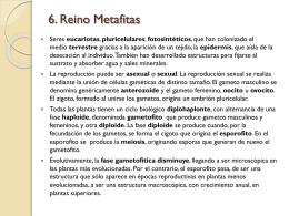 METAFITAS - HIBIO-GEO