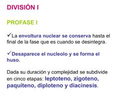 Diapositiva 1 - IES Ramon Llull