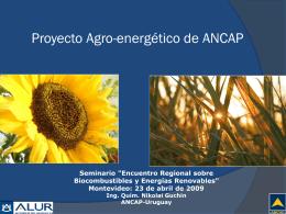 Biocombustibles ANCAP - Instituto de Ingeniería Eléctrica