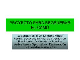 Proy. Regeneración Río Camú, Dr. Demetrio Miguel Castillo