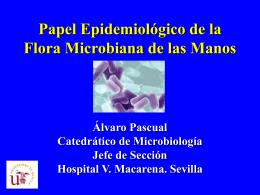 Papel Epidemiológico de la Flora Microbiana de las Manos
