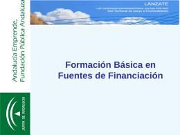 FORMACION BASICA ESTEPONA FUENTES DE FINANCIACION