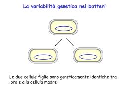 Genetica microbica PDF