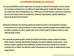 2 - Fermentazione alcolica