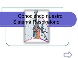Conociendo nuestro Sistema Respiratorio