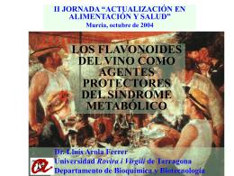 Flavonoides y síndrome metabólico