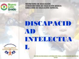 discapacidad intelectual1