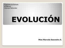 Teorias acerca de la evolución