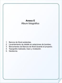 1) Bancos de Nivel Existentes.