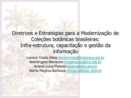 Diretrizes e Estratégias para a Modernização de Coleções