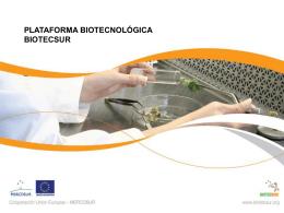 Anexo 5 Presentación del Proyecto Biotech