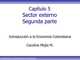 Tema 5 - Sector externo Parte II CMM