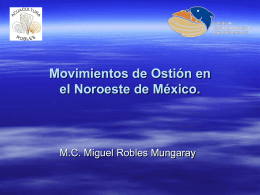 MOVIMIETOS DE OSTION EN EL NOROESTE DE MEXICO