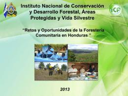 Los retos y oportunidades de la Forestería