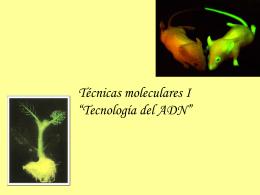 Tecnicas moleculares I