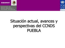 Informe Puebla
