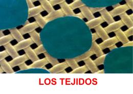 caracteristicas de los tejidos